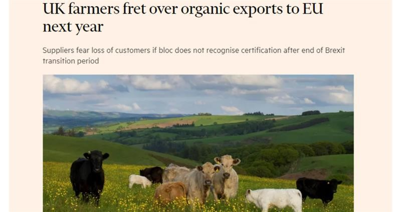 Financial Times headline organic Brexit_75278