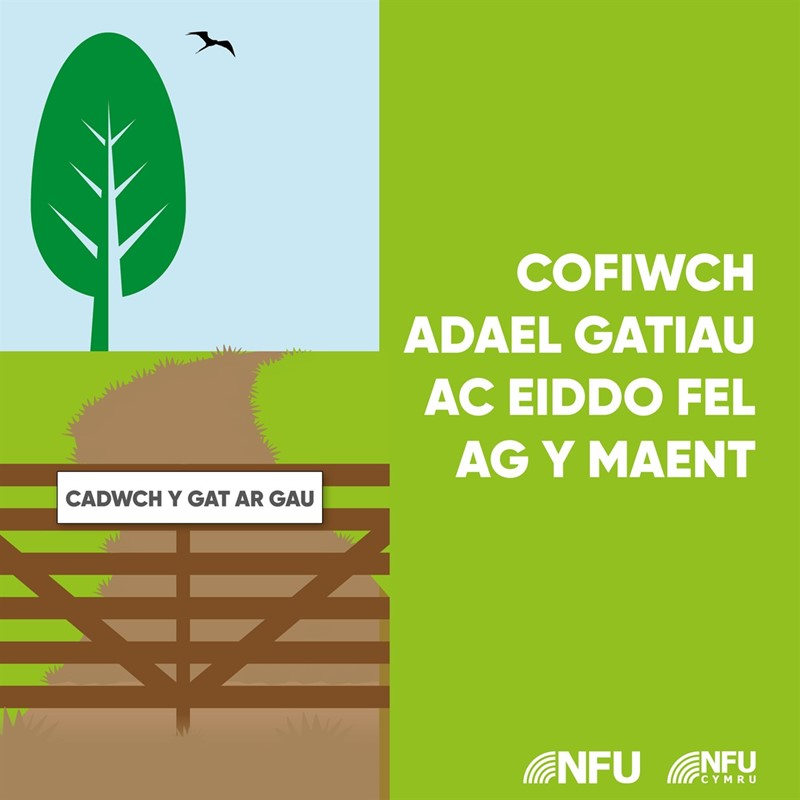 Remember to leave gates and property as you find them infographic - WELSH