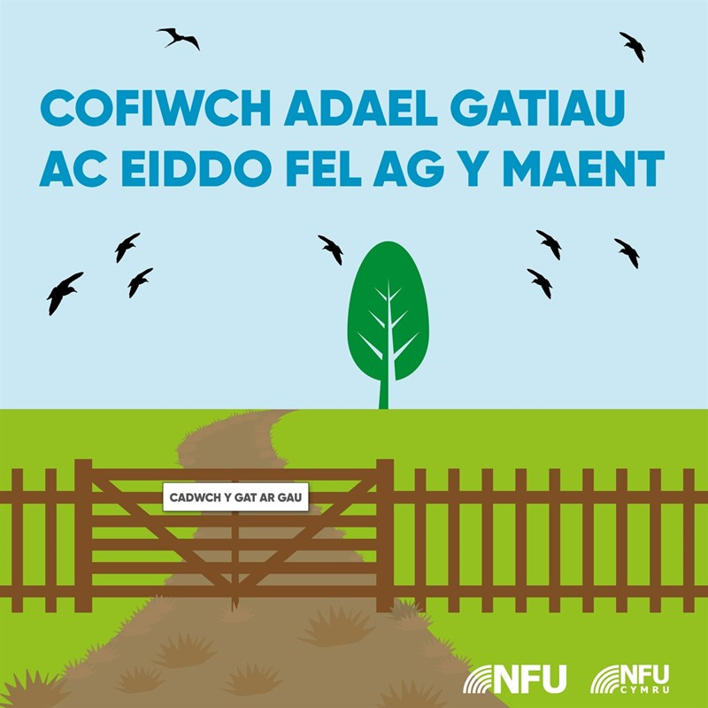Remember to leave gates and property as you find them infographic 2 - WELSH