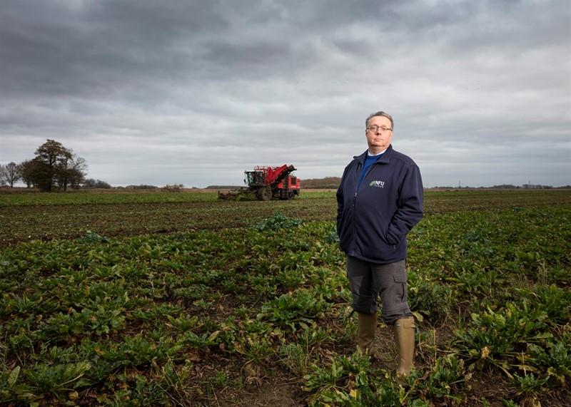 Britain - Sugar beet harvest_76218
