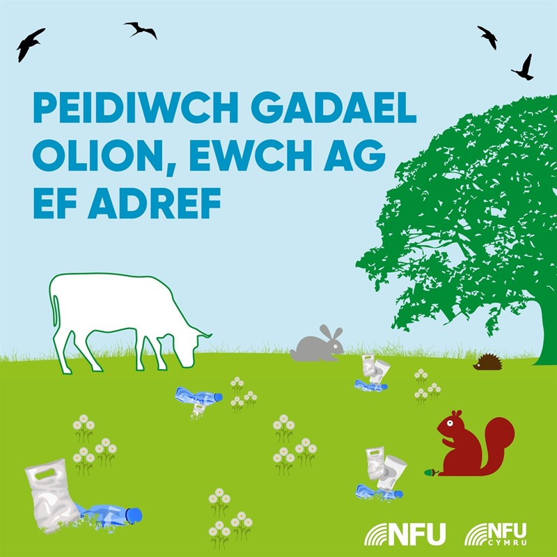 Leave no trace infographic - WELSH