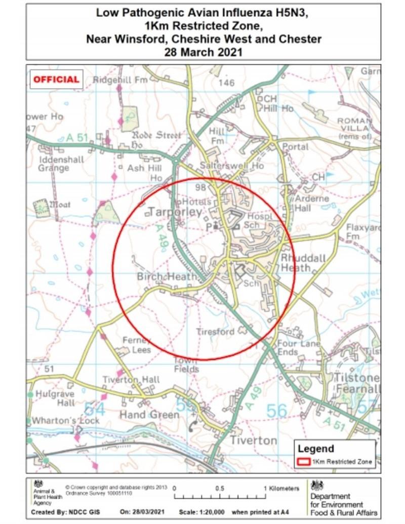 Avian Influenza 1k RZ Winsford 28/03/21_77764