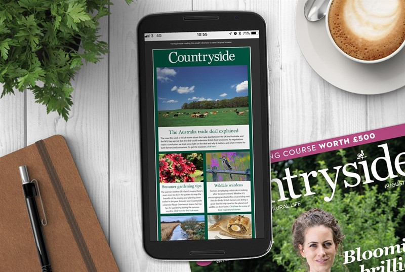 countryside newsletter sign up july 2021_79509