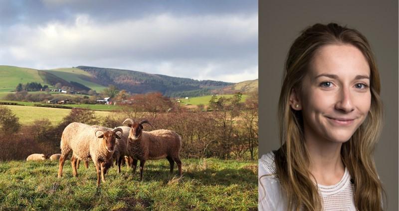 harriet henrick women in meat awards shortlist.png_80459