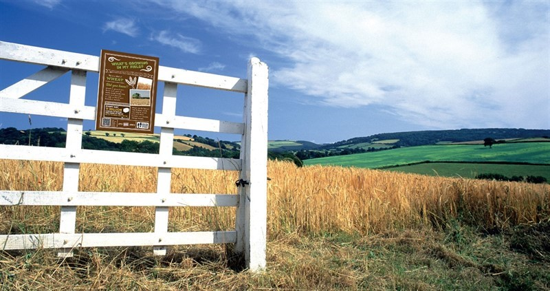 NFU field signs: order your free field signs