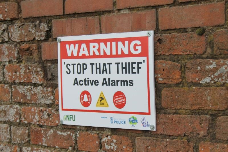 Stop That Thief_48299