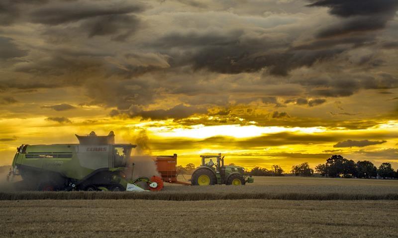 Harvest at Park Farm Thorney_65124
