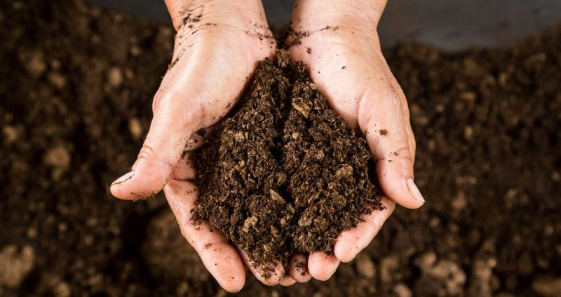 UK Soil Health Initiative guides