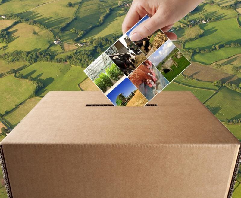 election ballot box and farming sector scenes_43404