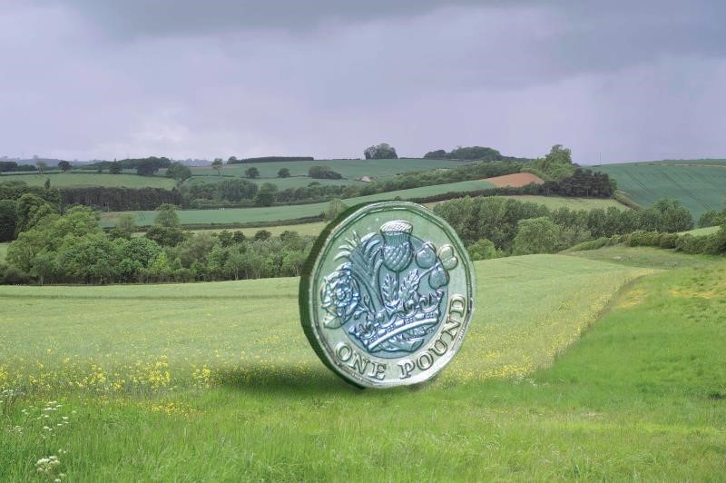pound coin in landscape, farming business, countryside_44886