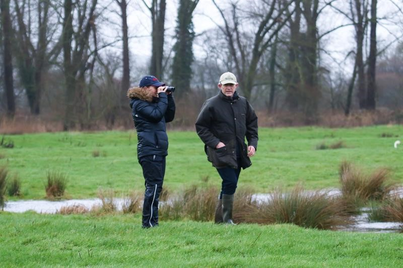 Big Farmland Bird Count extended to 21 February