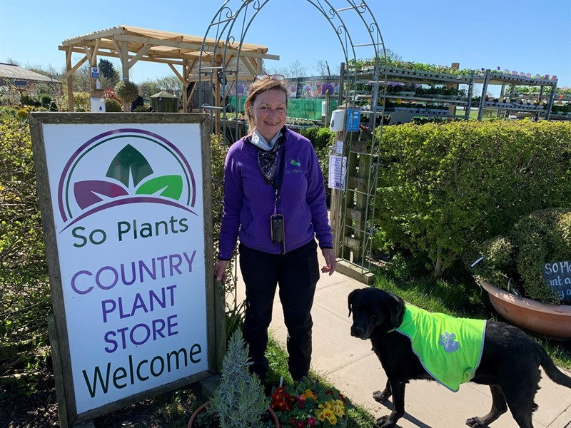Michelle Unsworth from So Plants_78441