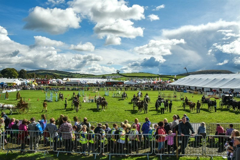 Westmorland County Show_77866