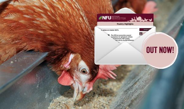 Poultry Highlights newsletter