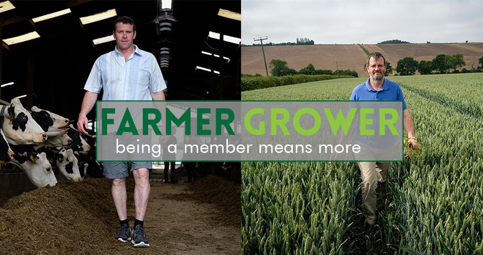 Farmer and Grower
