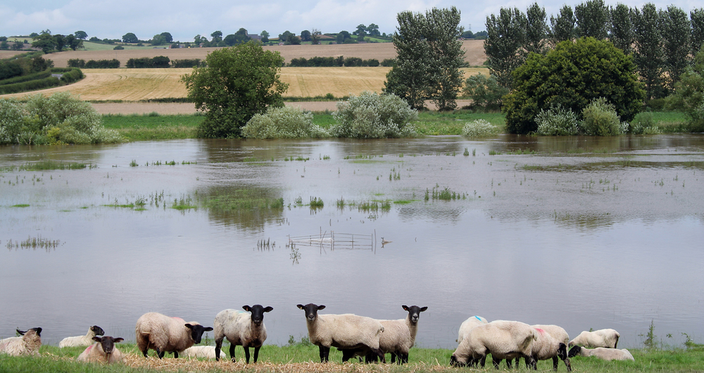 NFU welcomes Environment Agency's new flooding Action Plan