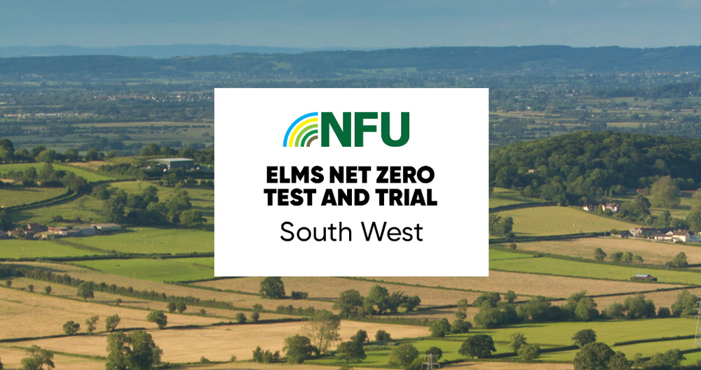 An illustrative image for the NFU's South West ELMs Test and Trial workshop