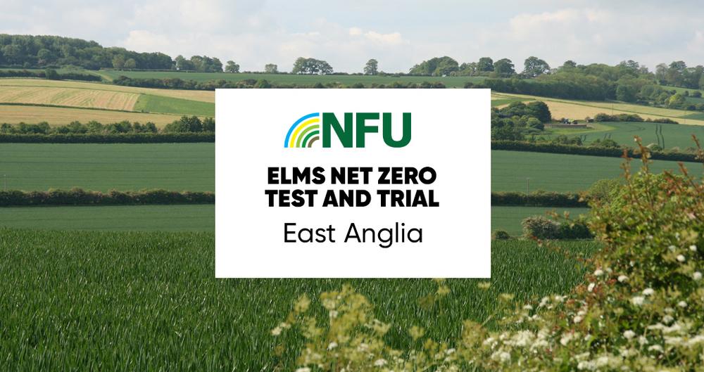 A representative image of the East Anglia Net Zero Test & Trial workshop