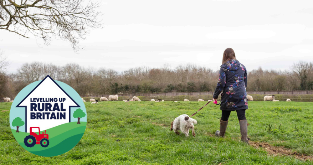 An image of a woman walking her dog in a field of sheep with the dog on the lead, with the NFU's Up Rural Britain logo