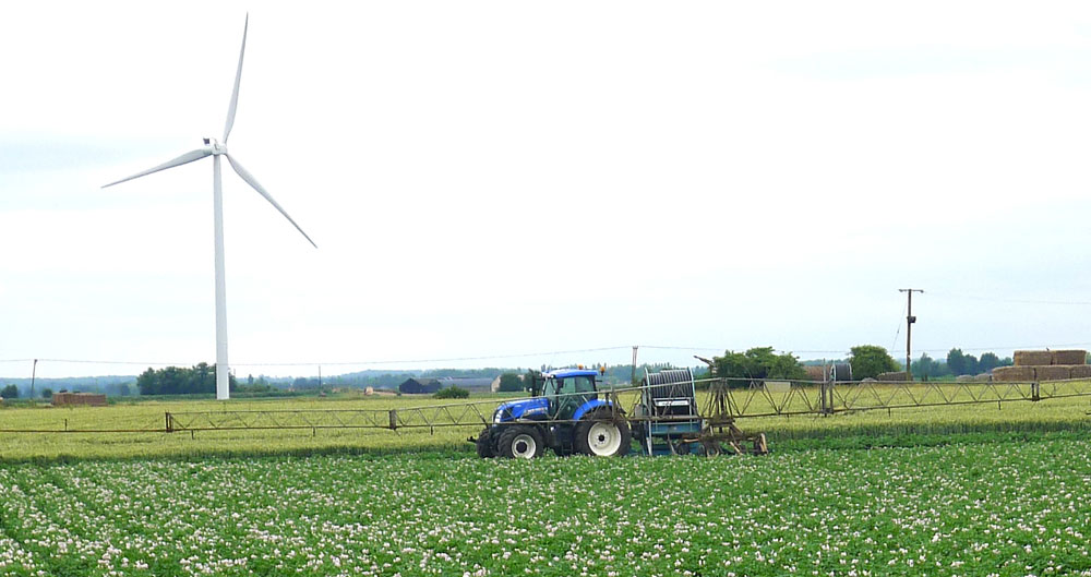 A tractor and boom irrigation set-up on a potato crop in the fens