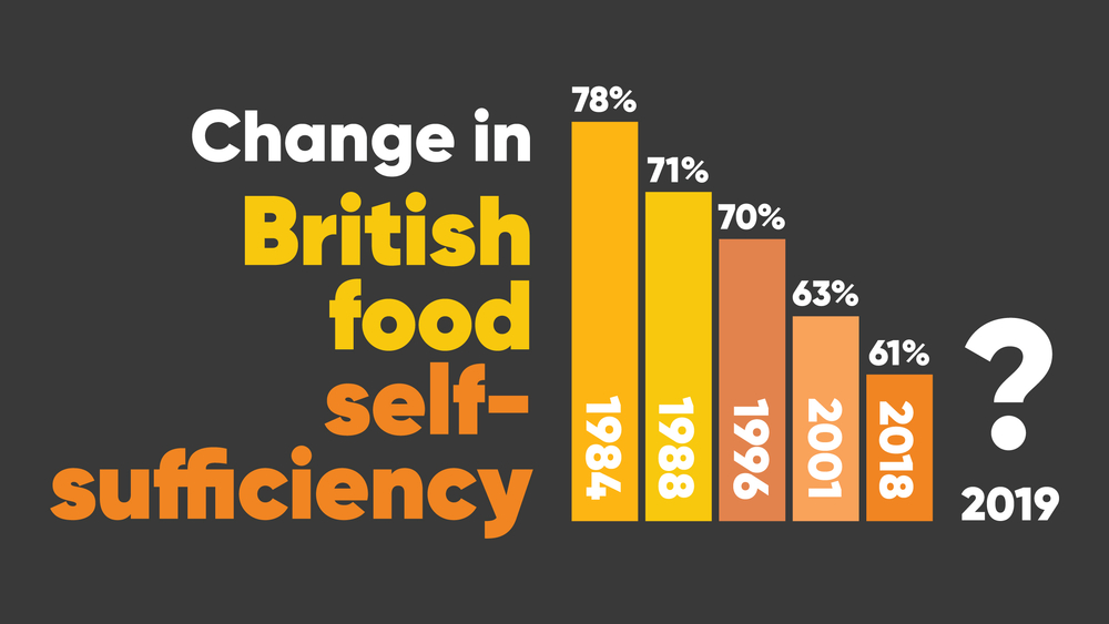 A graph showing the decrease in the level of British food self-sufficiency since 1984