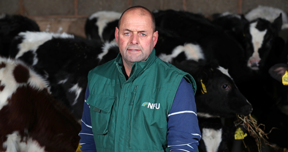 Dairy board chairman Michael Oakes looks at the latest impacts on dairy farming