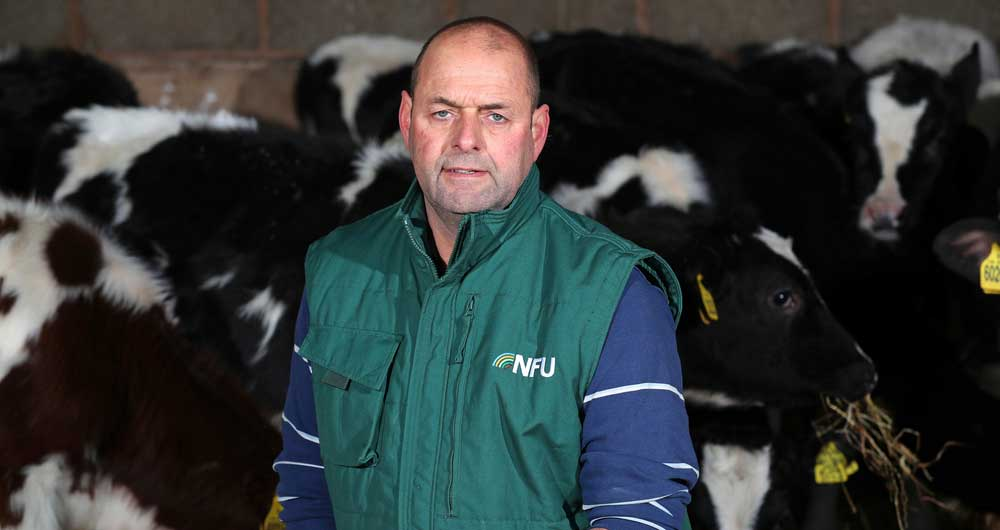 NFU Dairy Board Chairman Michael Oakes kneels in front of cows