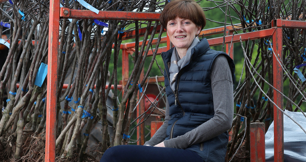 Ali Capper sits on step while new trees are being planted at her orchard