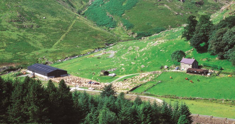 Hill farm in Yorkshire