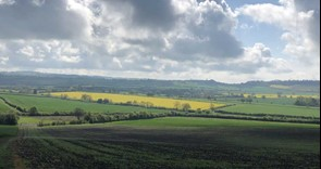 Reminder: BPS and agri-environment annual claim deadline