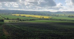 Countryside Stewardship core Mid-Tier exceptions process