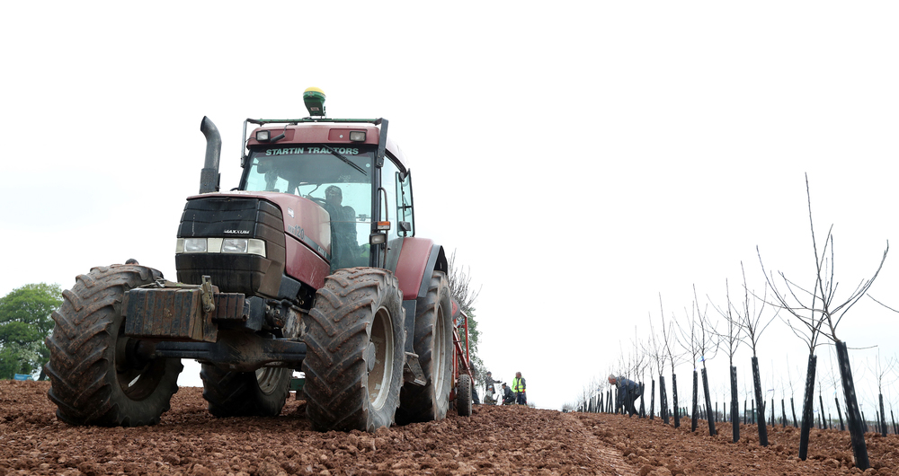 New National Skills Fund offers training in agriculture and horticulture sectors