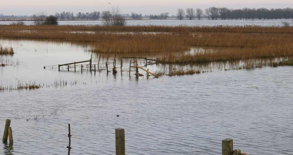 Flooding Nene Washes Farm Land