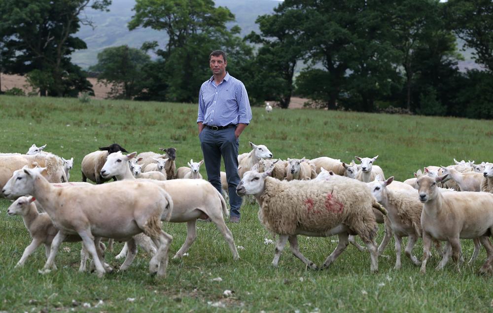 NFU livestock board chairman Richard Findlay