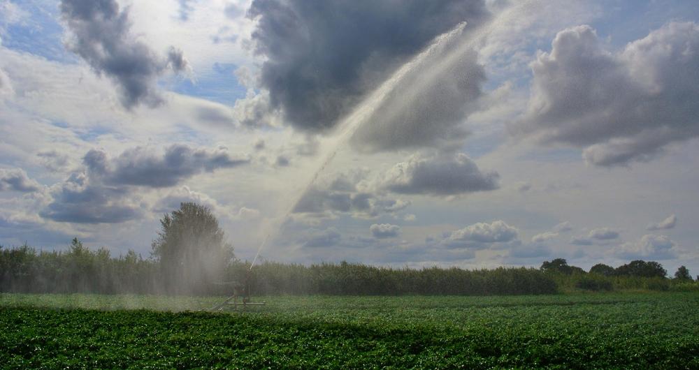 Early season irrigation prospects 'good'