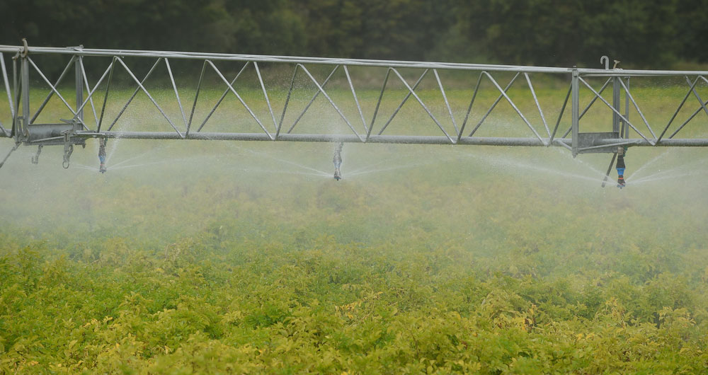 irrigating in Suffolk