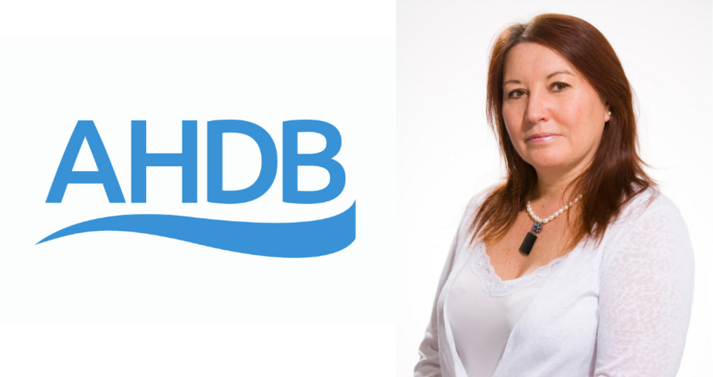 AHDB CEO Jane King to step down