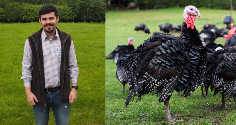 picture of Jonathan Baxter and picture of bronze turkey