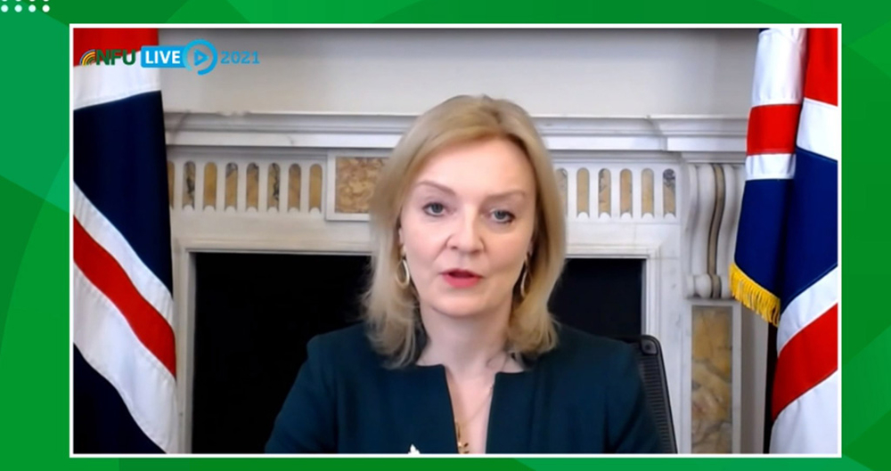 NFULIVE2021 Virtual Annual Conference