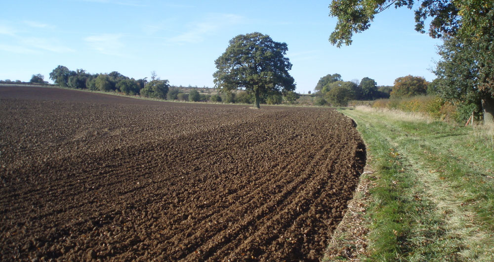 Practical advice for looking after your soil