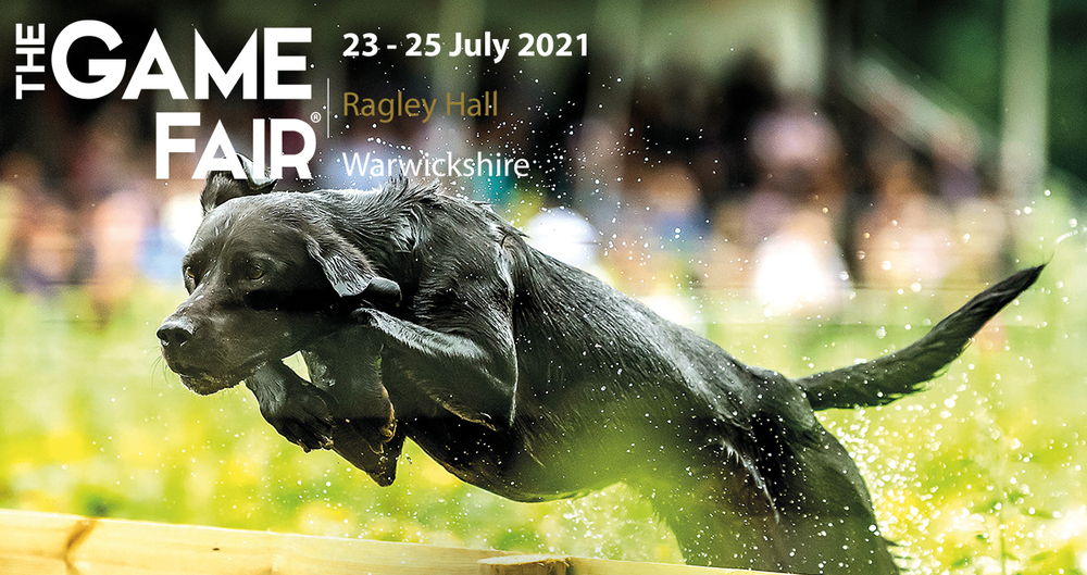 A promotional image for the 2021 Game Fair