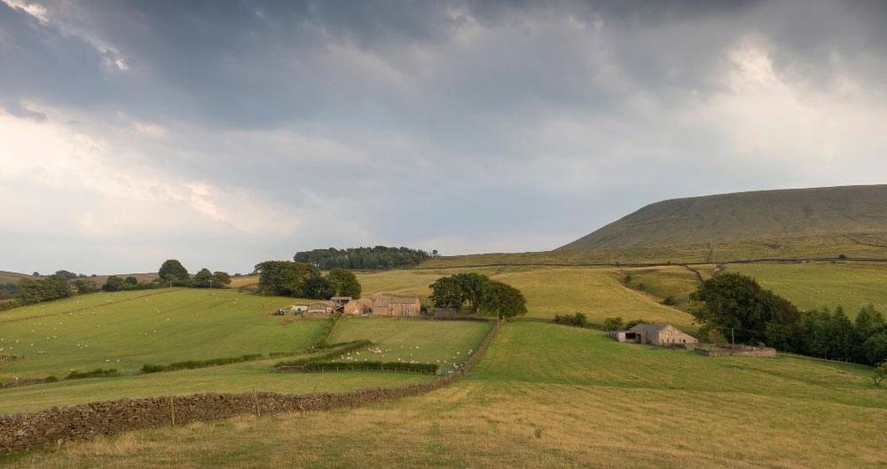 Uplands landscape, Pendle Hill, Lancashire