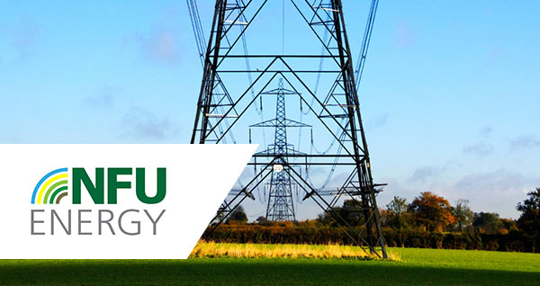 NFU Energy - image of electricity pylon in field