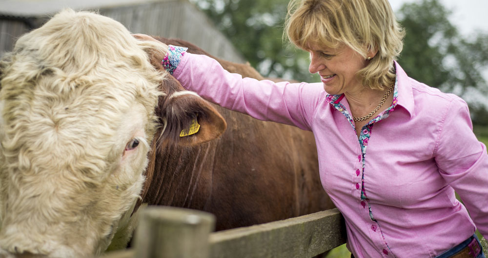 NFU President Minette Batters on farm with cattle