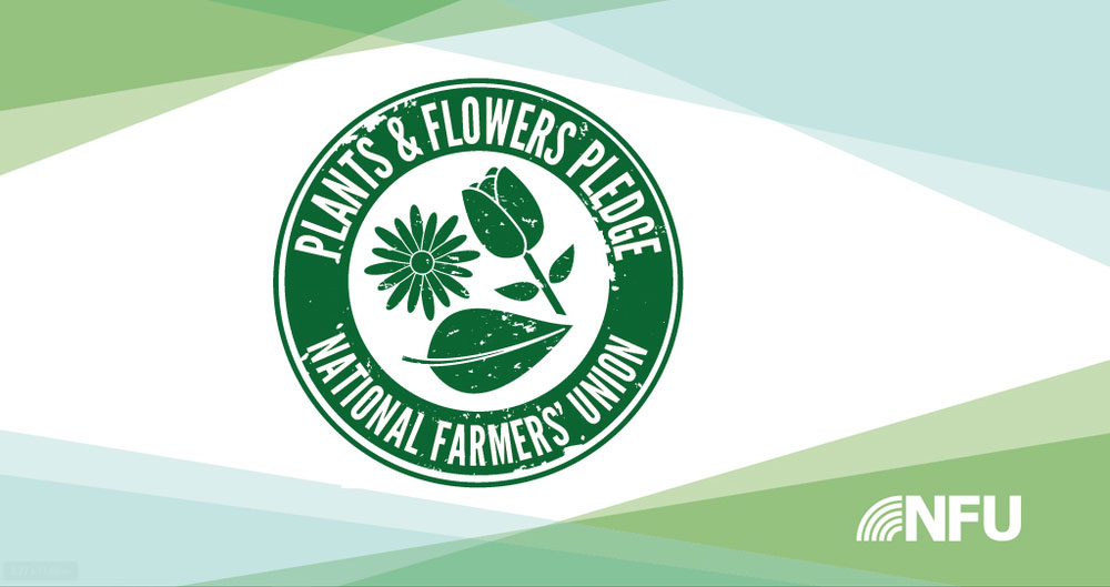 Major retailer signs up to NFU Plants and Flowers Pledge