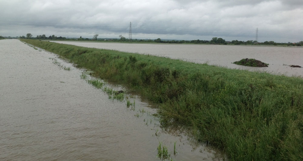 Farmland flooded near Wainfleet, Lincolnshire