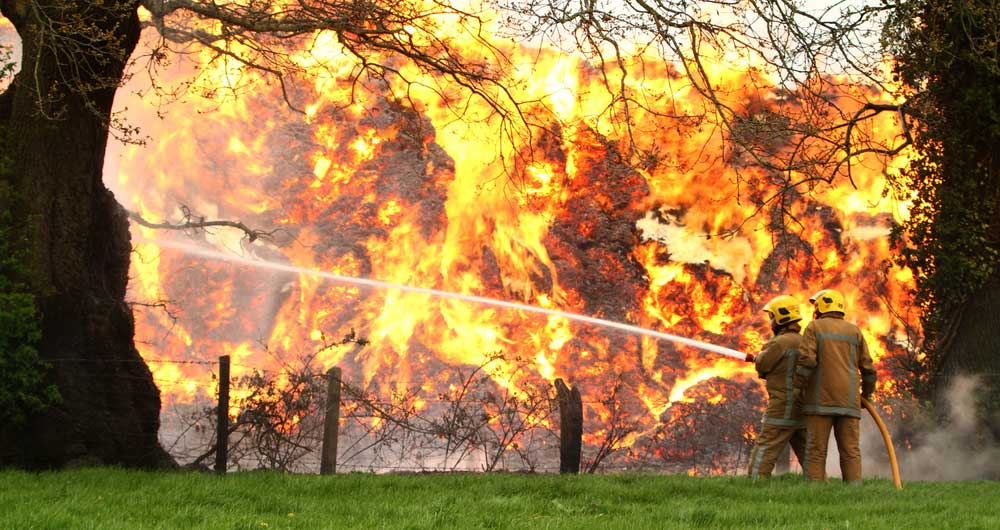 Firefightes tackle a ferocious field fire in North Shropshire after a miscanthus crop went up in flames