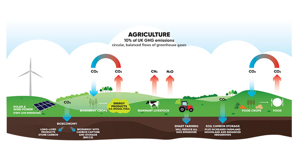 A diagram showing the flows of greenhouse gases in agriculture