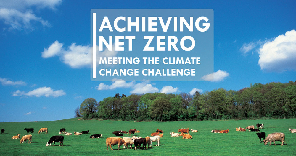 An image illustrating the NFU's Achieving Net Zero report