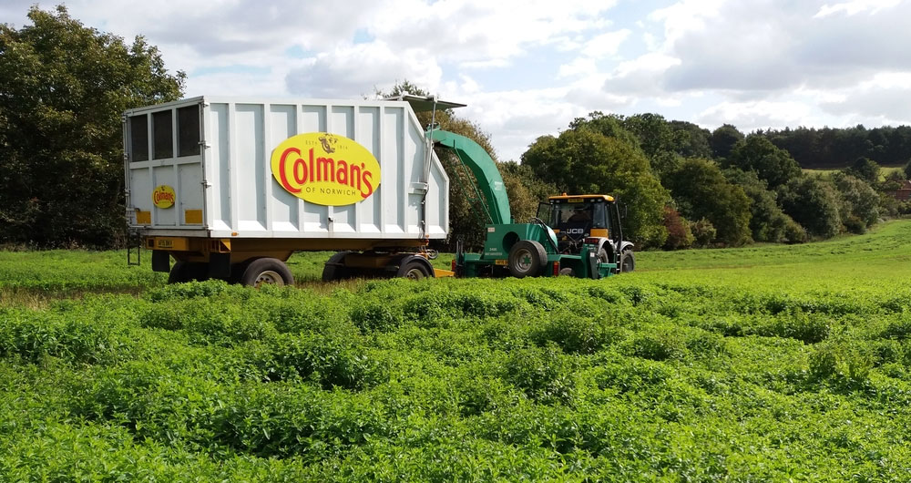 NFU and Colman's team up to back British meat